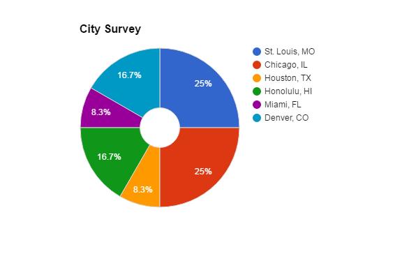 City Survey