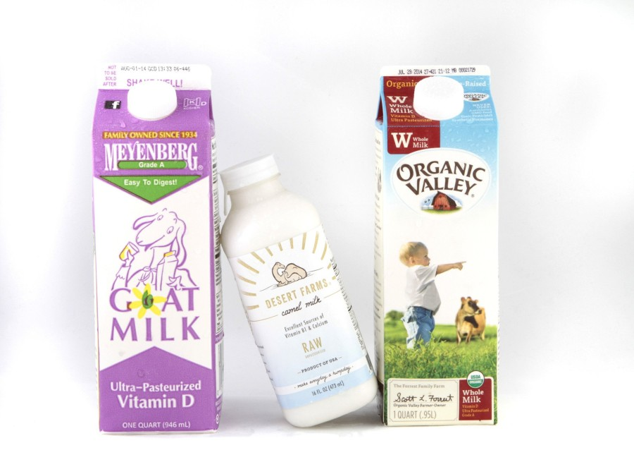 West Coast firm sells camel's milk as healthy, but pricey, drink