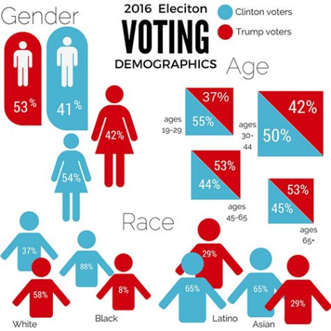 2016 Election: Who Voted for Who?