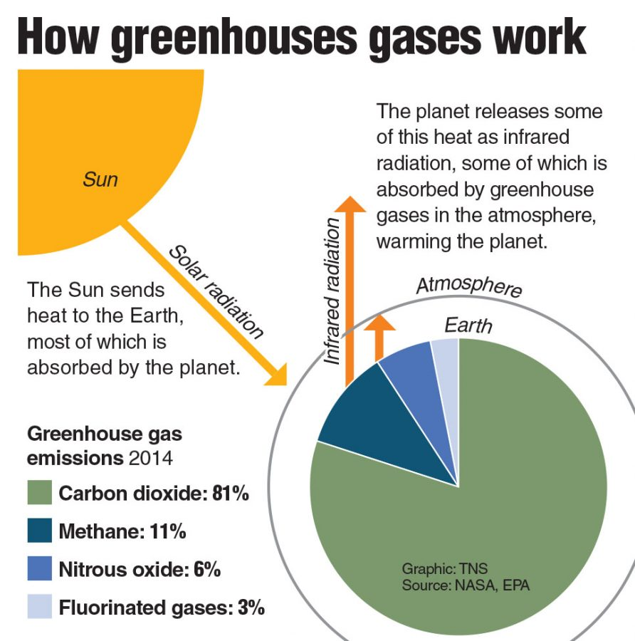Infographic on greenhouse gases.