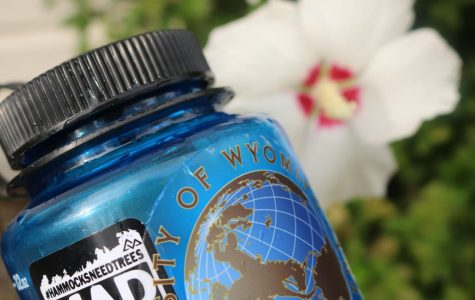 Reusable water bottles benefit the Earth and encourages hydration.