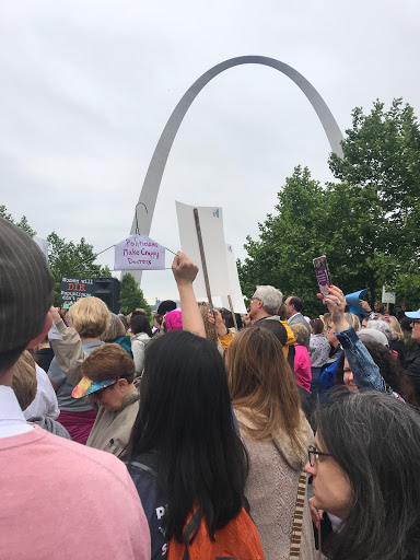 The gateway arch is featured in the background as protesters make their mark.
