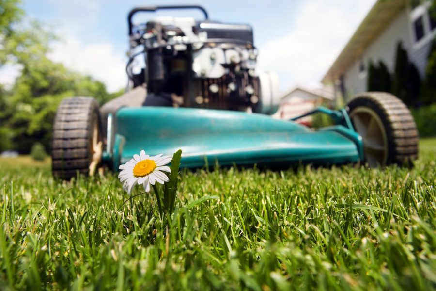 A student doing lawn work can help them gain some extra money