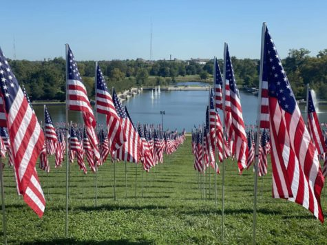A memorial display in Forest Park. One flag stands for each American who died as a result of the 9/11 attacks and the War on Terror.